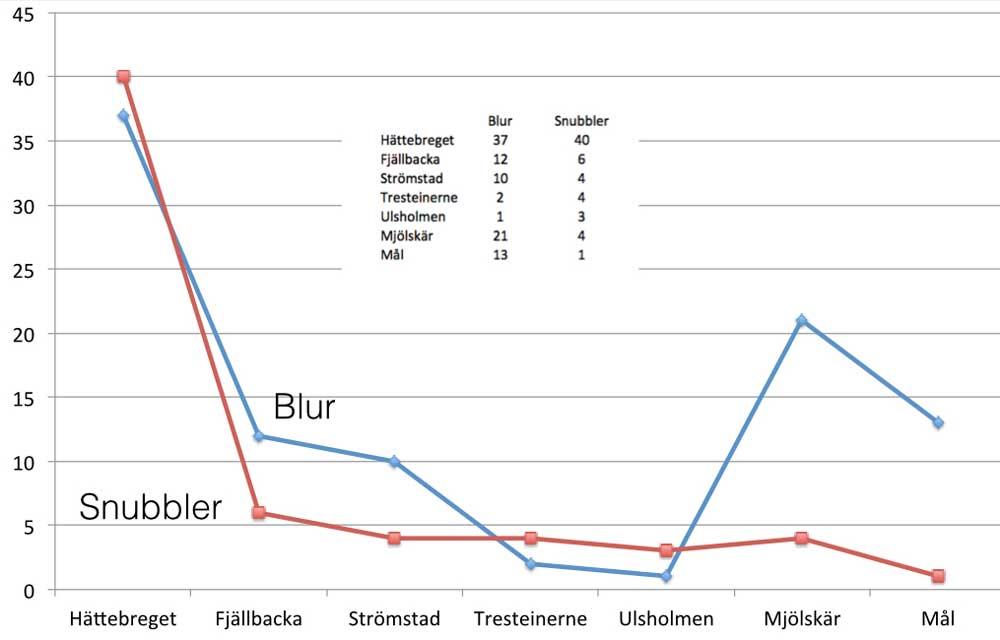 bohusracet2013-placeringar