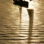 Nyfiken på… David Branigan, seglingsfotograf