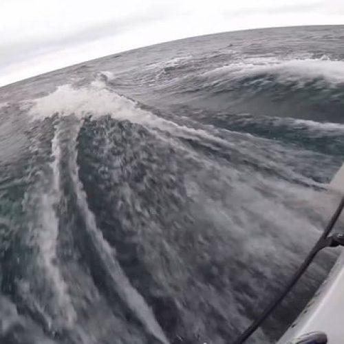Chicago Mackinac med Seascape 27