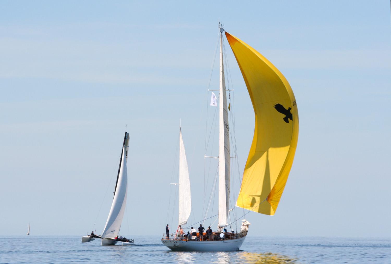 Shorthanded på ÅF Offshore Race?