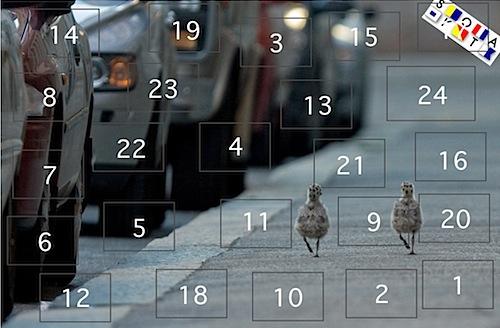 Skotas kalender