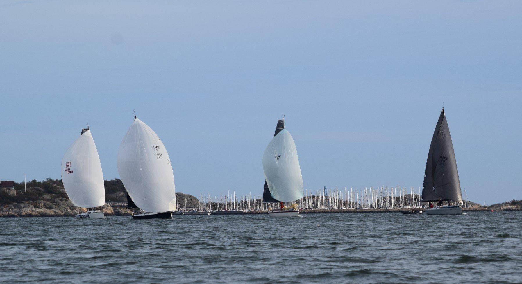 Alla bröt på Göteborg Open Sea Race (nästan)