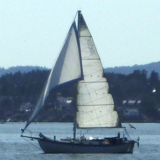 oslofjordsail.jpg
