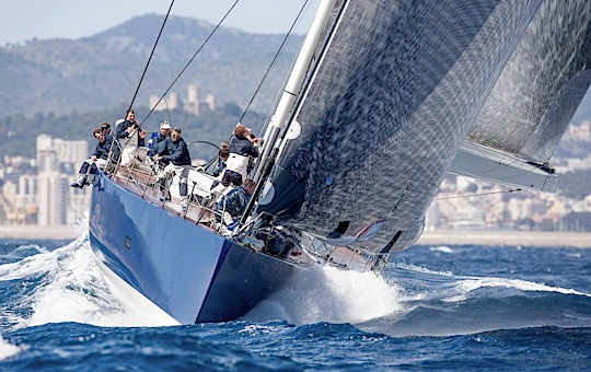 palmavela2012-4.jpg