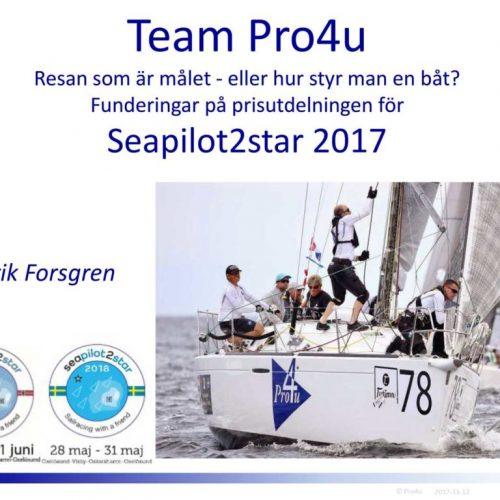 team-pro4u-styrning